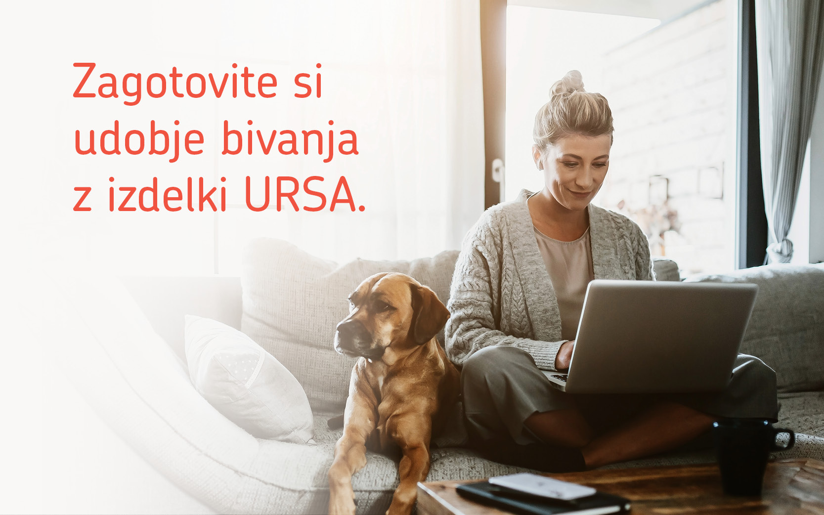 ursa-1610099988.jpg